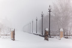 Snowstorm in the city Stock Image