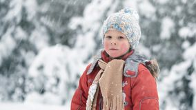 A snowstorm in December. The boy in a snowy forest. A snowstorm in December. The boy in a snowy forest stock video