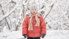 A snowstorm in December. The boy in a snowy forest. A snowstorm in December. The boy in a snowy forest stock video footage