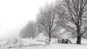 Snowstorm in a Dutch winter landscape stock photos