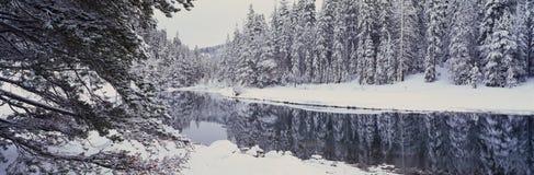 Snowstorm i det Lake Tahoe området Arkivfoto