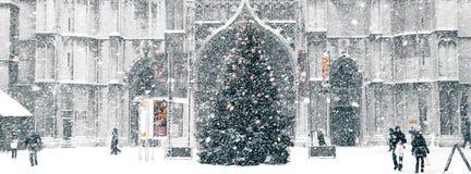 Snowstorm i staden royaltyfria foton