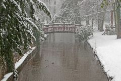 Snowstorm In The Park. Royalty Free Stock Photo