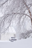 Snowstorm in Kentucky. A truck parked in the driveway during a blizzard, seen through the snow laden branches of a tree Stock Photo