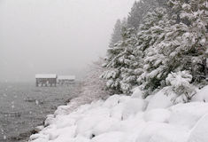 Snowstorm at Lake Tahoe Stock Photo