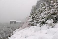 Snowstorm at Lake Tahoe. Snow-covered beach of Lake Tahoe shot during heavy snowfall Stock Photo