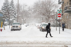 Snowstorm in Montreal. Stock Image