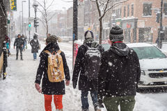 Snowstorm in Montreal. Royalty Free Stock Images