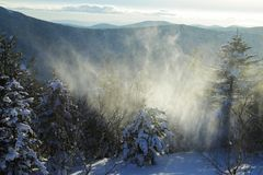Snowstorm in the mountains Stock Images