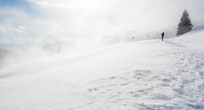 Snowstorm in the mountains at winter time. Mountains of Trentino Alto Adige, South Tyrol. Hiker ski in poor visibility due to a snowstorm in the South Tyrolean royalty free stock photos
