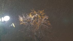 Snowstorm during the New Year holidays. Street lamp shines on snowflakes. View from the bottom stock footage