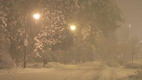 Snowstorm stock video