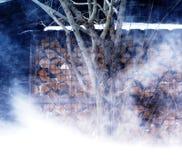 snowstorm O forte vento obteve perdido em um canto acolhedor fotografia de stock