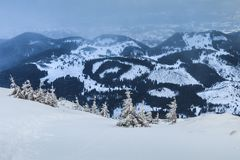 Snowstorm in Piatra Craiului Mountains Royalty Free Stock Photo