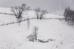 Snowstorm. In the Romanian Carpathians Stock Images