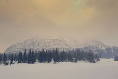 Snowstorm in the Uinta Mountains Royalty Free Stock Photo