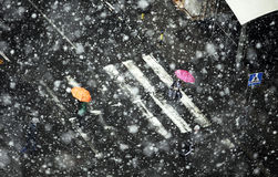 Snowstorm Stock Images