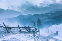 Snowstorm. Winter in the mountains Royalty Free Stock Image