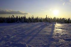 snowsun Arkivbilder