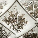 snowtime Fotografía de archivo