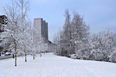 Snowtown Lizenzfreies Stockfoto