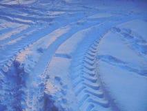 snowtraces Royaltyfri Foto