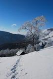 snowtrail Royaltyfria Bilder