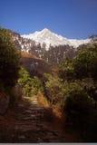 SnowTrekking Himalayan encamina Triund Kangra la India fotografía de archivo