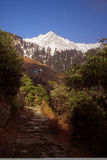 SnowTrekking Himalayan encamina Triund Kangra la India Foto de archivo libre de regalías