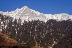 SnowTrekking Himalayan instrada Triund Kangra India Immagine Stock Libera da Diritti