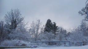 Snowview Foto de archivo