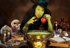 Snowwhite's apple. Green halloween witch putting a red apple in a cauldron with poisonous soup stock photos