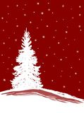 SnowXmasTrees. A Christmas Tree in the Snow royalty free illustration