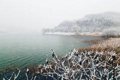 Snowy湖风景 库存照片
