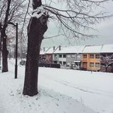 Snowy и красочное Стоковое фото RF