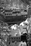 Snowy Любляна в черной & белизне Стоковые Изображения RF