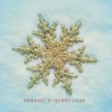 Snowy приправляет приветствия Стоковая Фотография RF