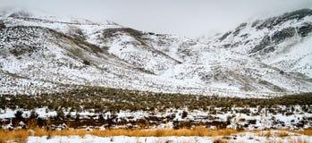 Snowy-Abhang Stockfotografie