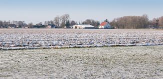 Snowy-Ackerland auf den Stadtränden eines niederländischen Dorfs Lizenzfreies Stockfoto