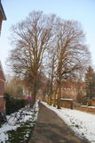 Snowy Alley in a Carthusian Park Stock Images