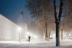 Snowy alley Royalty Free Stock Photography