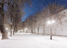 Snowy alley Royalty Free Stock Photos