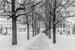 A snowy alley in Stams Austria Royalty Free Stock Image