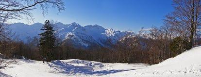Snowy alpine panorama royalty free stock image
