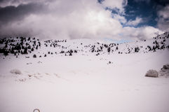 Snowy alpine road Stock Images