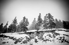 Snowy alpine road Royalty Free Stock Photography