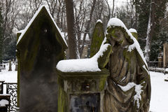 Snowy Angel from the mystery old Prague Cemetery, Czech Republic Royalty Free Stock Photography