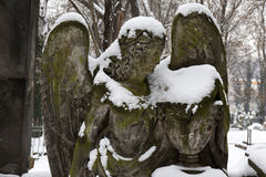 Snowy Angel from the mystery old Prague Cemetery, Czech Republic Stock Images