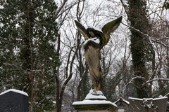 Snowy Angel from the mystery old Prague Cemetery, Czech Republic Royalty Free Stock Photo