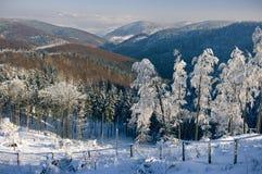 Snowy-Ansicht Lizenzfreies Stockfoto